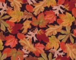 Patchworkstoff Quilt Stoff All About Autumn mit Blättern und Nüssen