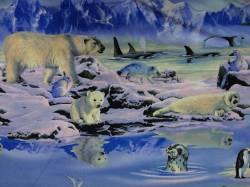 Patchworkstoff Quilt Stoff Run Wild Run Free Scenic Robben Eisbären