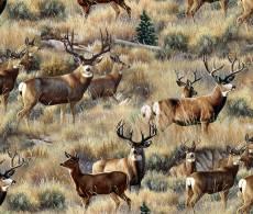 Patchworkstoff Quilt Stoff Gold Mule Deer in Sage Hirsche