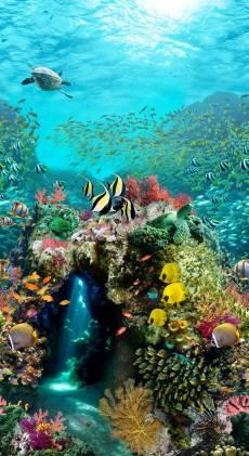 Patchworkstoff Quilt Panel Stoff Ocean Life Digitaldruck Ozean Unterwasserwelt
