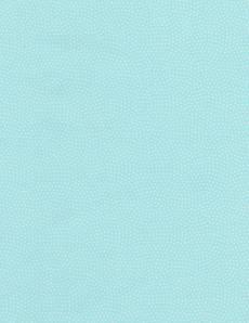 Patchworkstoff Quilt Stoff Beistoff *Aqua* Spin Hellblauer Stoff mit Punkten