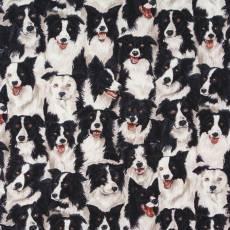 Patchworkstoff Quilt Stoff Hunde, Hund, Bordercollie