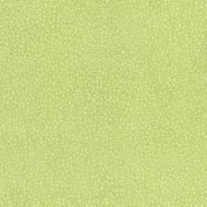Patchworkstoff Stoff Quilt *Basic Twist* Hellgrün gemustert (gepunktet, Blume) Stoffabschnitt
