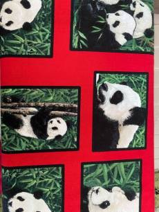 Patchworkstoff Giant Pandas Bambus grün rot schwarz EQ 3694-8542
