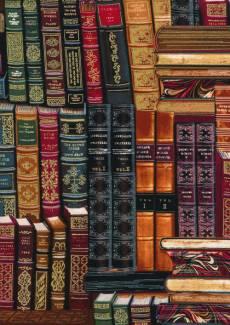 Patchworkstoff Stoff Quilt Bücher Buchrücken Bücherregal multi Library
