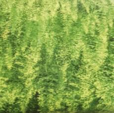Patchworkstoff Stoff Quilt Nadelwald grün 1662 30173-775