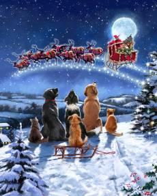 Patchwork *Christmas Winter Meeting* Panel Weihnachten Hunde Schlitten Rentiere AL40640C1