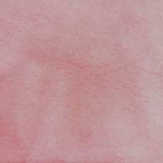 Wellnessfleece Kuschelfleece rosa REST 65 cm x 150 cm RK21