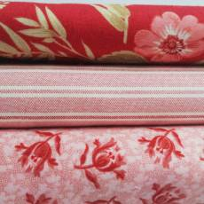 Angebot Sommer 21 Stoffpaket Stoffset 3er Set Blumen Ranken Blüten Blätter Streifen rot rosa creme SP21-0003