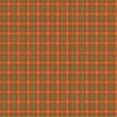 Patchworkstoff *Autumn Plaid Persimmon* Herbst Karo kariert orange dunkel grün braun C10828R-PERS