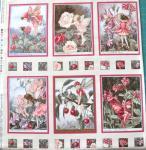 Flower Fairy Panel 6 kleine Bilder Teil A, Apfelblüte; gesamt 60x56cm