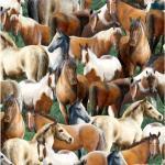 Patchworkstoff Stoff Quilt Roaming Wild Pferde allover