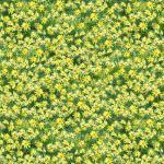 Patchworkstoff Stoff Quilt Roaming Wild gelbe Blumen auf grün
