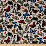 Patchworkstoff Frühlingsstoff Schmetterlinge Butterflys *Frolicking Field*