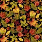 Patchworkstoff Quilt *Autumn is calling* Herbstblätter auf schwarz