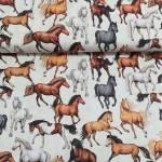 Patchworkstoff Überbreite 147 cm Pferd Mustang Schimmel 080605-949170