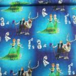 Jersey Kinderstoff little Darling Disney Frozen Elsa Anna Kristoff Olaf blau weiß grün J127-224