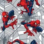Patchworkstoff *Spiderman* Marvel Web Crawler rot blau grau CP73252