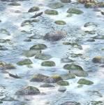 Patchworkstoff *A New Adventure* Steine Wasser blau grau weiß grün WP10139-407