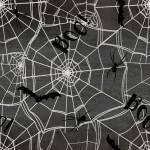 Patchworkstoff *Spooky Night* Halloween Spinnen Spinnennetz schwarz weiß  18112